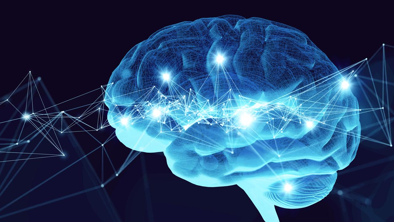Día Mundial del Alzheimer 2019: El 35% de los casos se asociarían con 9  factores de riesgo modificables SESST