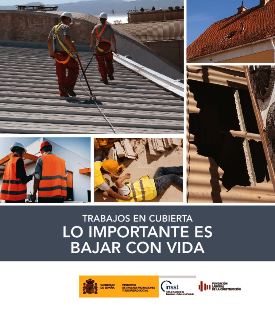 thumbnail of seguridad-en-cubiertas-de-obra