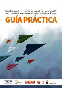 thumbnail of guia-practica-ertes-ii-1