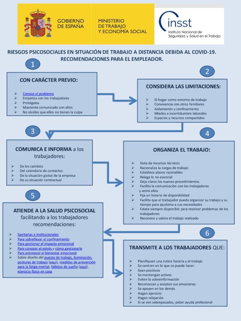 thumbnail of riesgos-psicosociales-y-trabajo-a-distancia-por-covid-19-esquema