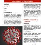 thumbnail of coronavirus-del-sindrome-respiratorio-agudo-grave-2-sars-cov-2-1