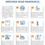 thumbnail of salud-pulmonar-y-covid-19-i